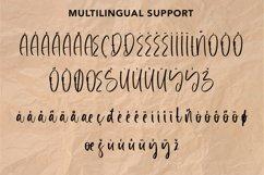 Web Font Monetary - Handwritten Script Font Product Image 6