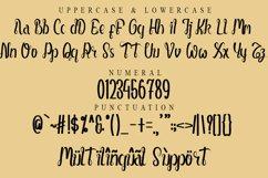 Money Rich - Modern Handwritten Font Product Image 2