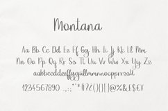 Montana Product Image 4
