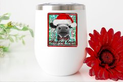 Mooey Christmas Heifer/Cow Design PNG File Sublimation Product Image 2