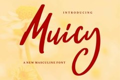 Web Font Muicy - A New Masculine Font Product Image 1