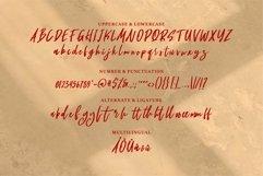 Web Font Muicy - A New Masculine Font Product Image 6