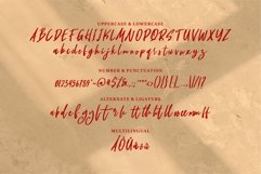 Muicy - A New Masculine Font Product Image 6