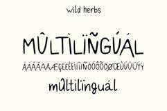 Wild Herbs. Rustic Sans Serif Font. Doodles, Logos Product Image 2