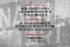 Web Font Naen Art Font Product Image 5