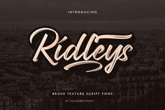Ridleys Product Image 1