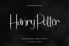 Hanry Potter Product Image 1