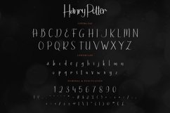 Hanry Potter Product Image 2