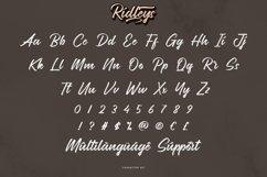 Ridleys Product Image 4