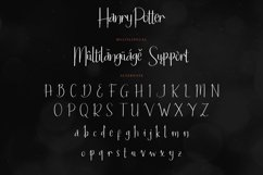 Hanry Potter Product Image 4