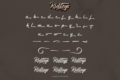 Ridleys Product Image 2