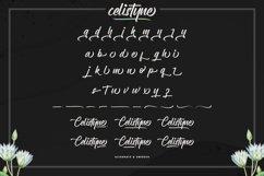 Celistyne Product Image 4