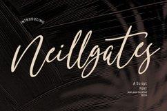 Neillgates Script Font Product Image 1