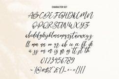 Neillgates Script Font Product Image 4
