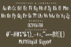 Nevertheless - Handwritten Font Product Image 2