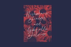 Nickjones Feminine Script Font Product Image 5