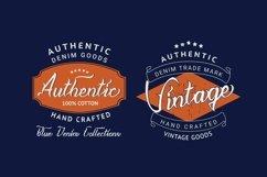 Web Font Nlithy - Decorative Script Font Product Image 2