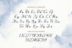 Web Font Nlithy - Decorative Script Font Product Image 3