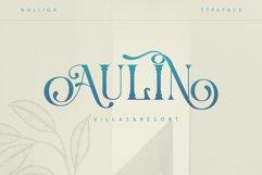 Nolliga Typeface Product Image 2