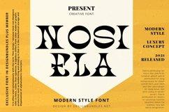 Web Font NOSIELA Font Product Image 1