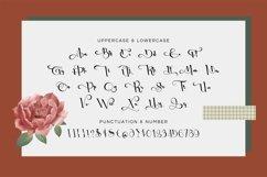 Web Font OckieCristin Product Image 3
