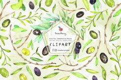 Watercolor Olive Leaves Clipart| Drawberry CP053 Product Image 1
