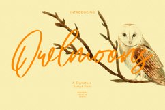 Owlmoons Signature Font Product Image 1