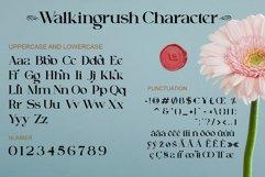 Walkingrush Product Image 3