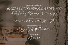 Paislay - A Stylish Signature Font Product Image 4