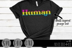 Human | Pansexual, Pride, SVG, PNG, DXF Product Image 1
