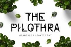 Web Font Philothra Product Image 1