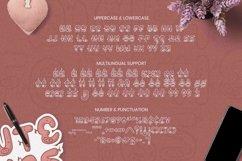 Web Font Piggy Font Product Image 4
