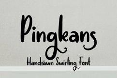 Web Font Pingkans - Handrawn Swirling Font Product Image 1