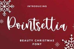Web Font Pointsettia - Beauty Christmas Font Product Image 1