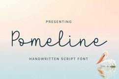Web Font Pomeline - Script Font Product Image 1