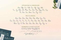 Web Font Pomeline - Script Font Product Image 4