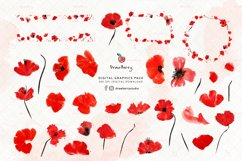 Watercolor Red Poppies Floral Clipart| Drawberry CP056 Product Image 2