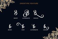 Portland Script   A Beautiful Calligraphy Font Product Image 6