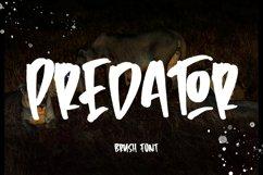 Predator - Brush Font Product Image 1