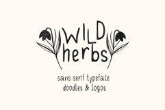 Wild Herbs. Rustic Sans Serif Font. Doodles, Logos Product Image 3