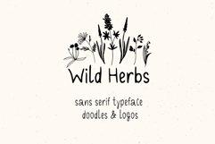 Wild Herbs. Rustic Sans Serif Font. Doodles, Logos Product Image 4
