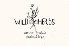 Wild Herbs. Rustic Sans Serif Font. Doodles, Logos Product Image 1