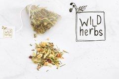 Wild Herbs. Rustic Sans Serif Font. Doodles, Logos Product Image 6