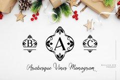 Arabesque Vines Monogram Font - A-Z Lettered Frames Product Image 1