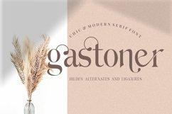 Hilden - stylish modern serif font Product Image 6