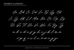 Renature - Elegant Signature Font Product Image 4