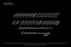 Renature - Elegant Signature Font Product Image 3