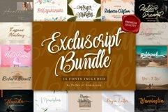 Excluscript - Selective Script Fonts Bundle for Designers Product Image 1