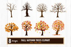 Fall tree clipart bundle svg Product Image 1