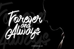 Andals Script Typeface Product Image 2